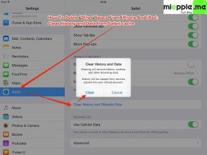 iPad air other space_how to clear Safari cache